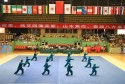 Jiaozuo International taiji competition 2013 11
