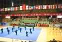 Jiaozuo International taiji competition 2013 12
